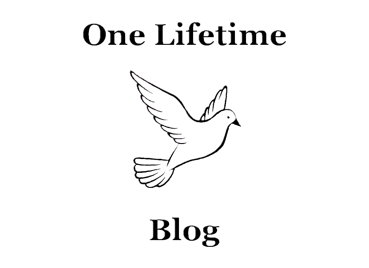 One Lifetime Blog